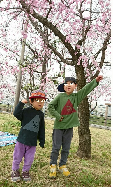 f:id:oroshinoie:20170407033330j:image