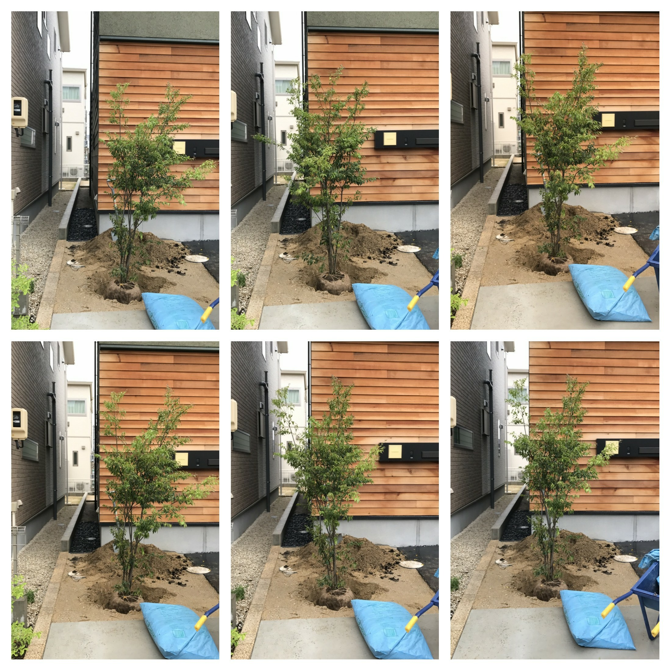 f:id:oroshinoie:20170610182303j:image