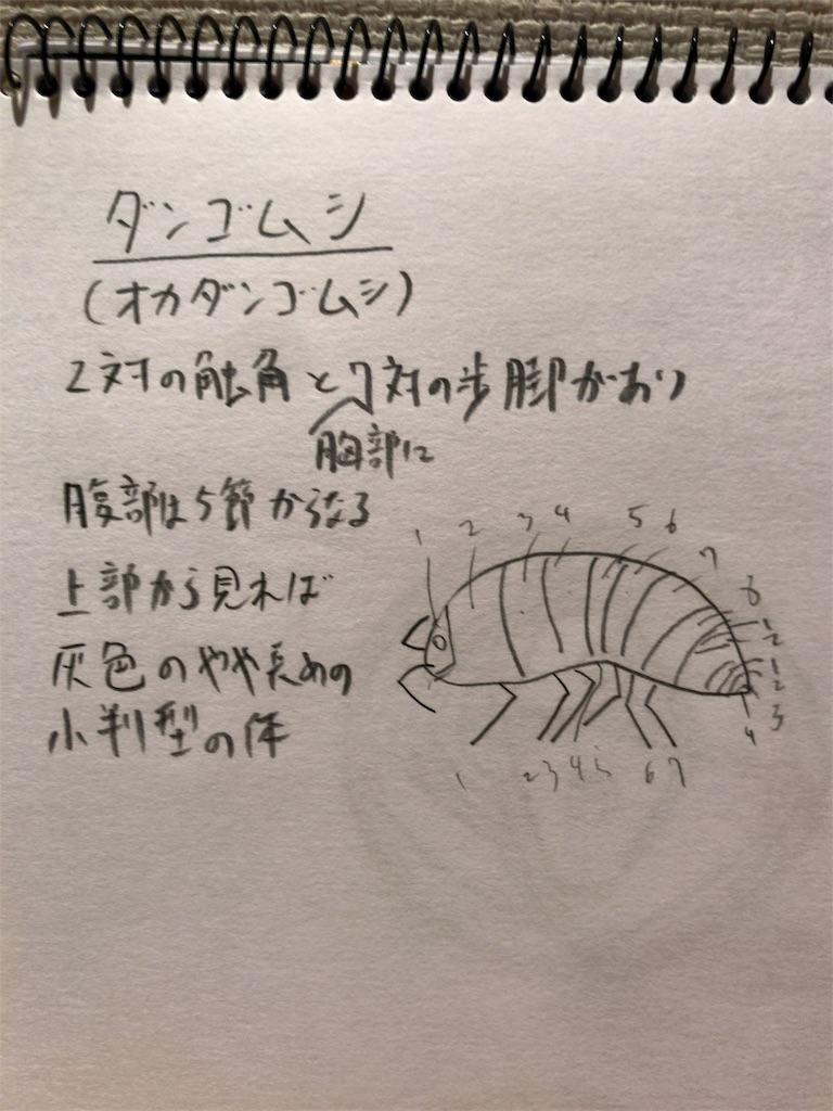 f:id:oryokobo:20180625191520j:image