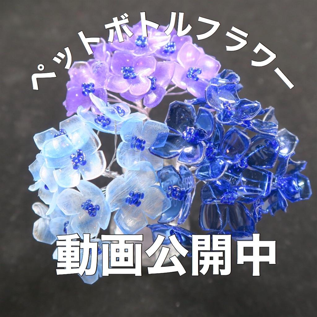 f:id:oryokobo:20200801051632j:plain