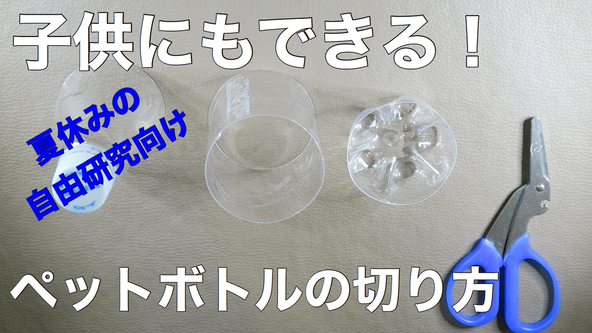 f:id:oryokobo:20200806061236j:plain