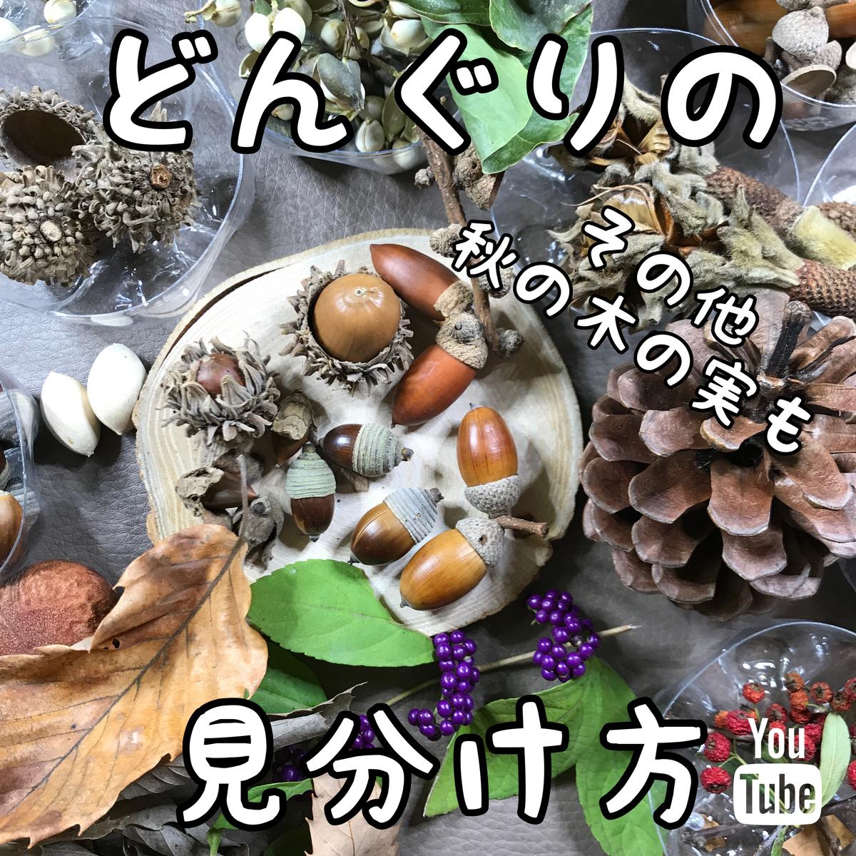 f:id:oryokobo:20201115182201j:plain