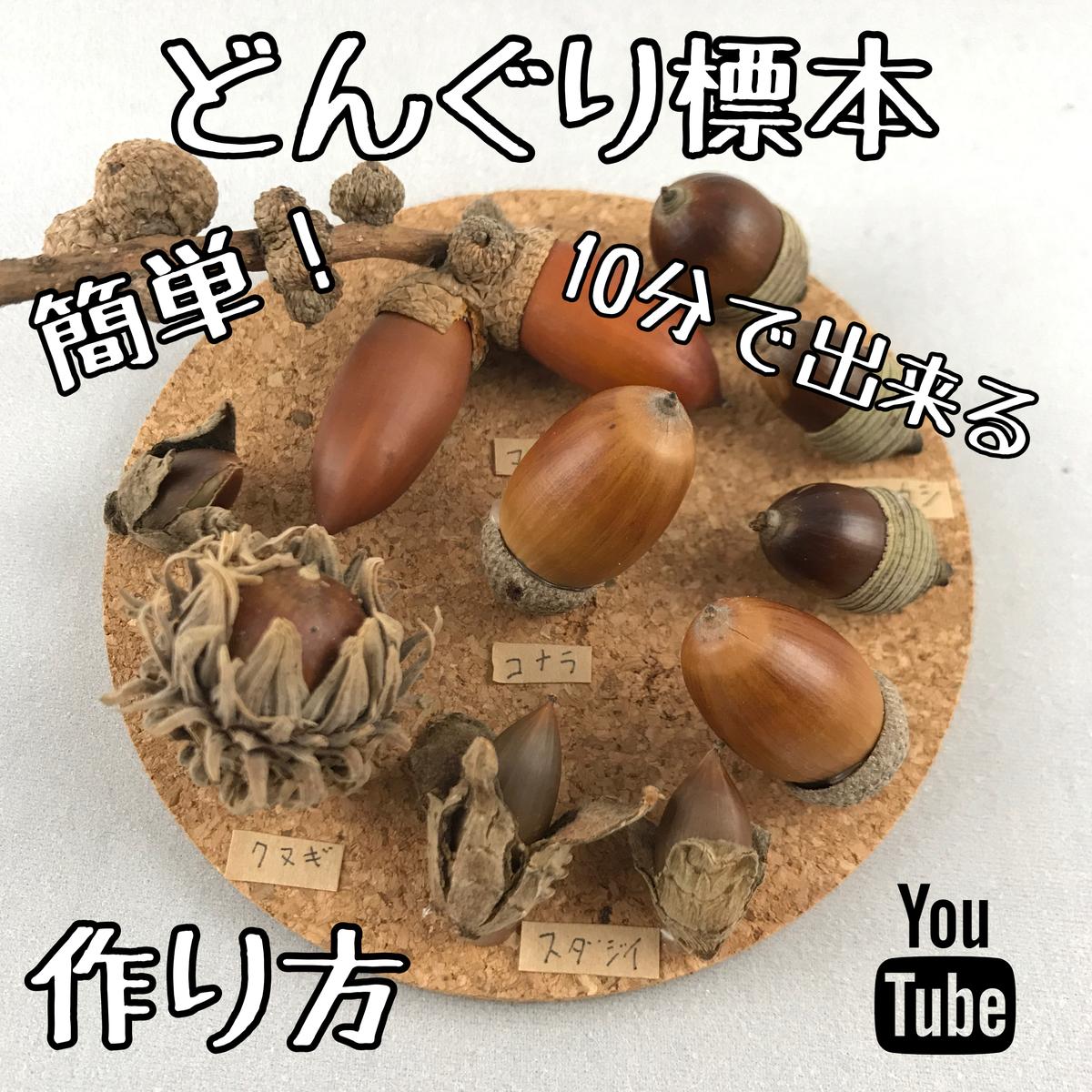 f:id:oryokobo:20201118200021j:plain