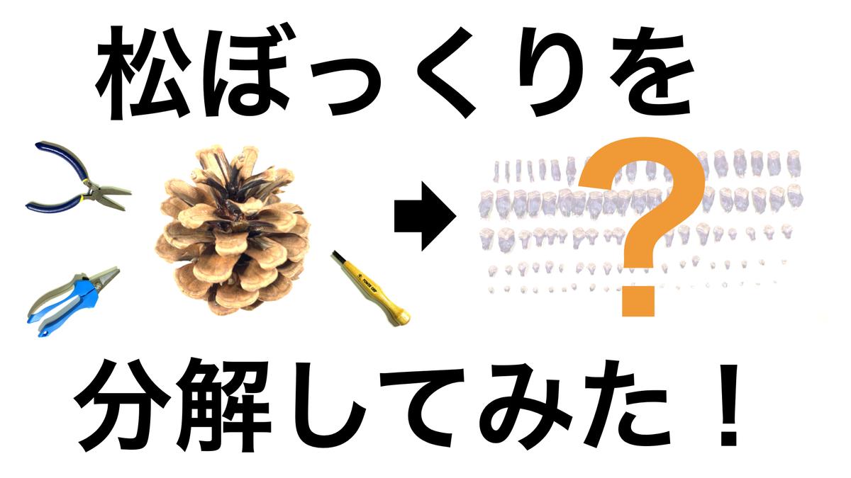 f:id:oryokobo:20210818214917j:plain