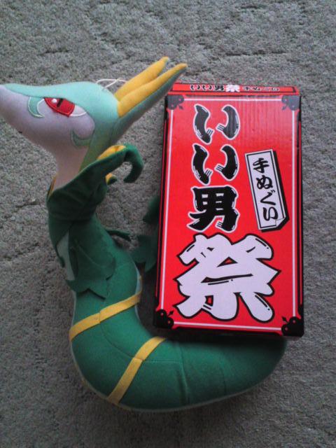 f:id:orz-pokemon:20110504075326j:image