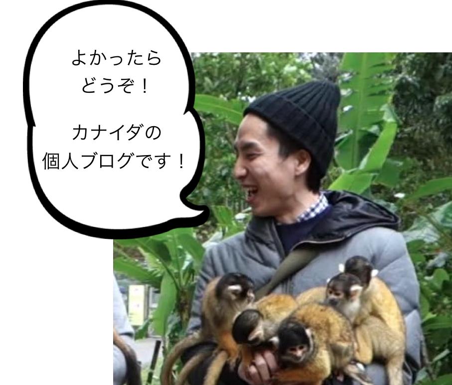f:id:osadaseikei-staff:20161110193645p:plain