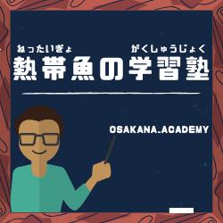 f:id:osakana_academy:20190729221527p:plain