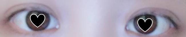 f:id:osakanasango:20200210113640p:plain