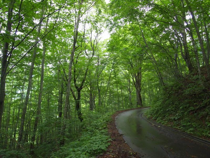 f:id:osamu-kurosaka:20110709164504j:image