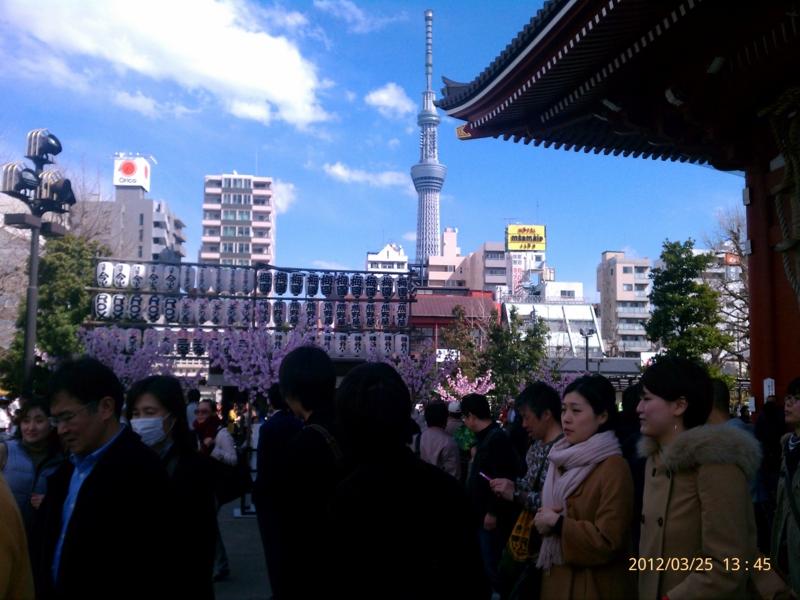 f:id:osamu-kurosaka:20120325134540j:image