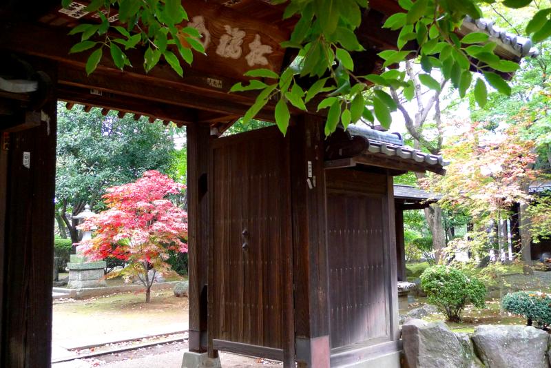 f:id:osamu-kurosaka:20141109002103p:image