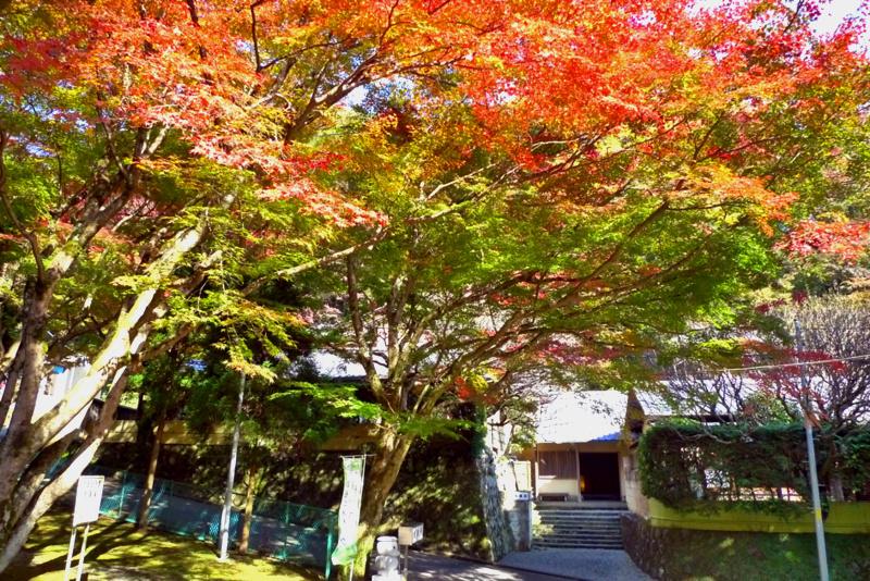 f:id:osamu-kurosaka:20141124212050j:image