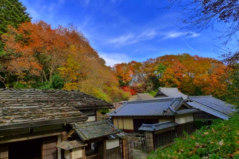 f:id:osamu-kurosaka:20141207190759j:image