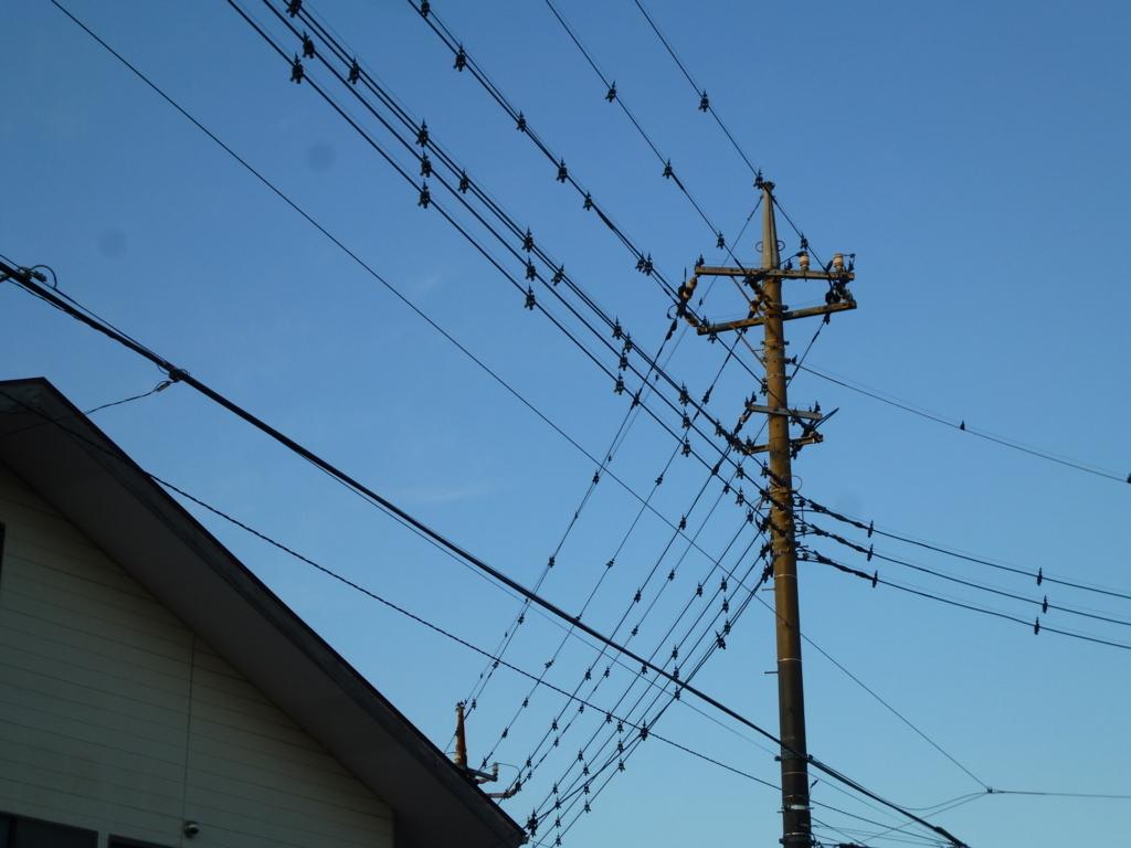 海老名のカラスみたいに見える電線の鳥よけ