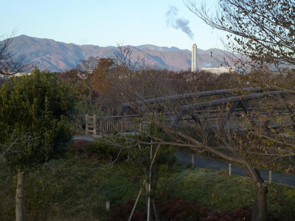 三川公園遊具から望む丹沢