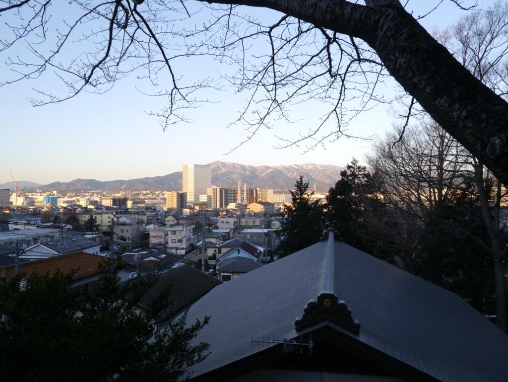 弥生神社境内からの丹沢の山並み