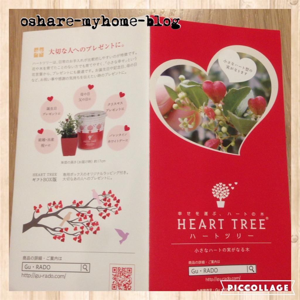 f:id:oshare-myhome-blog:20160630230212j:image