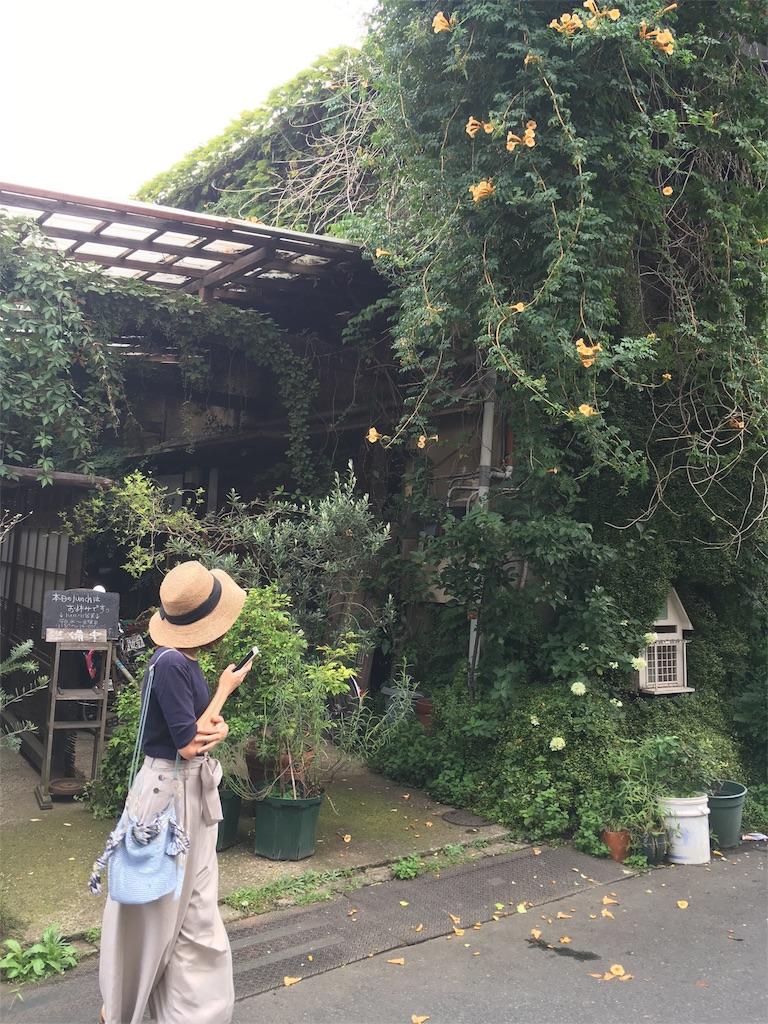 f:id:oshioshilife:20170813154939j:image