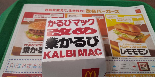 f:id:osozakiraichiblog:20190512141737j:image
