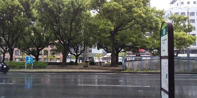 f:id:osozakiraichiblog:20200521161849j:image