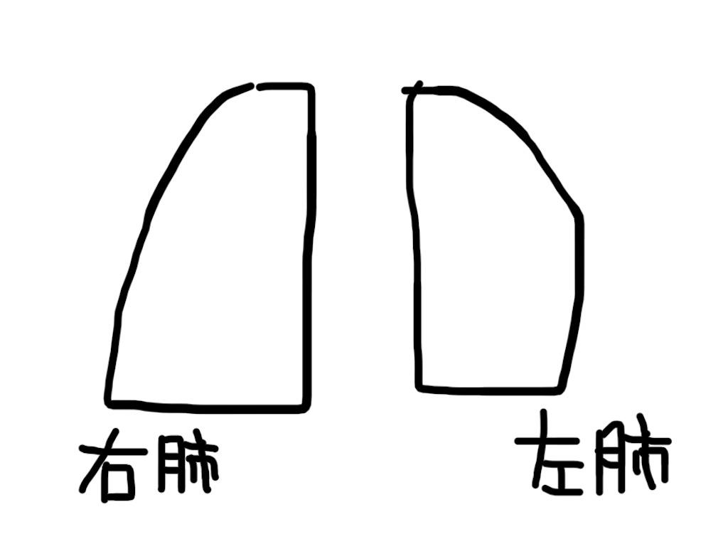 f:id:ospf_neochiradio:20210126151416j:image
