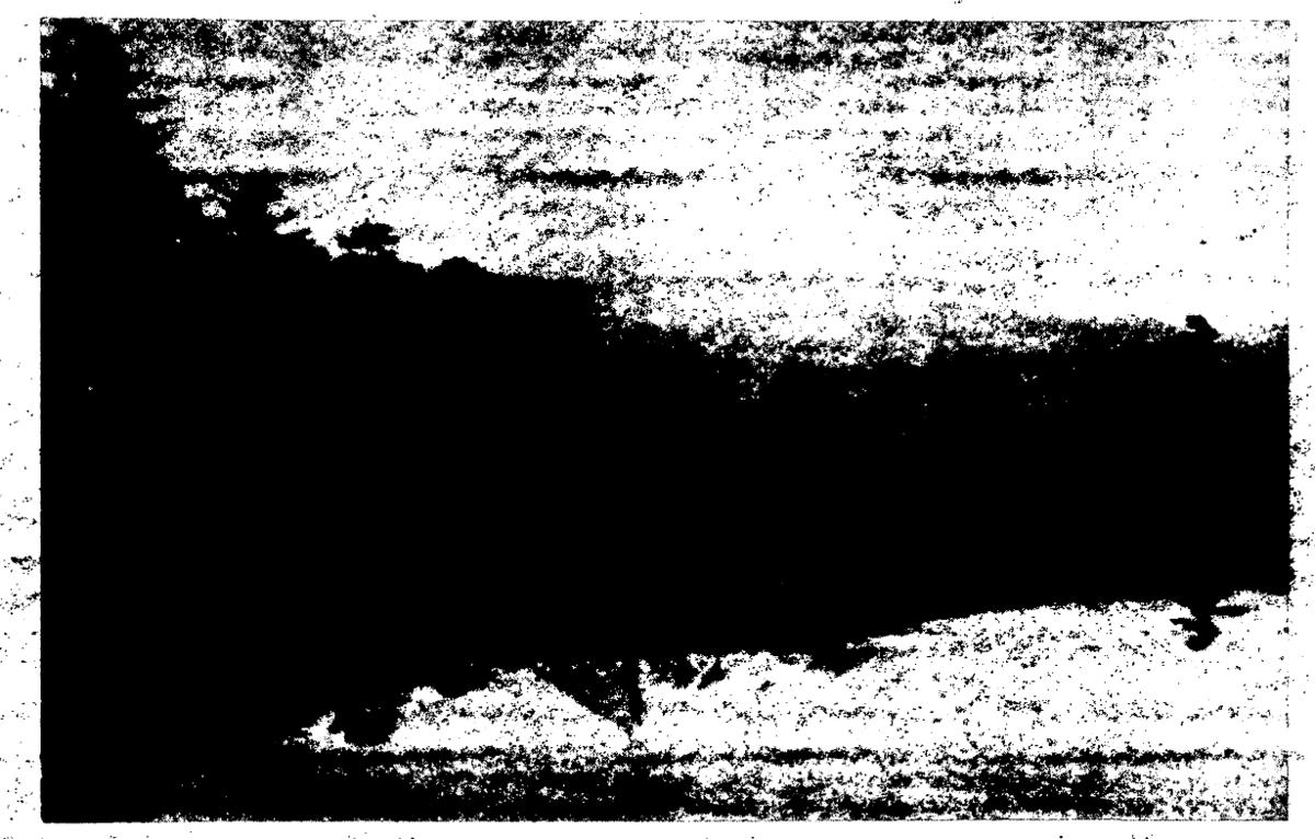 f:id:ospreyfuanclub:20210807180604p:plain