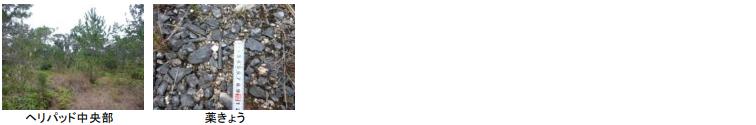 f:id:ospreyfuanclub:20210908130539p:plain