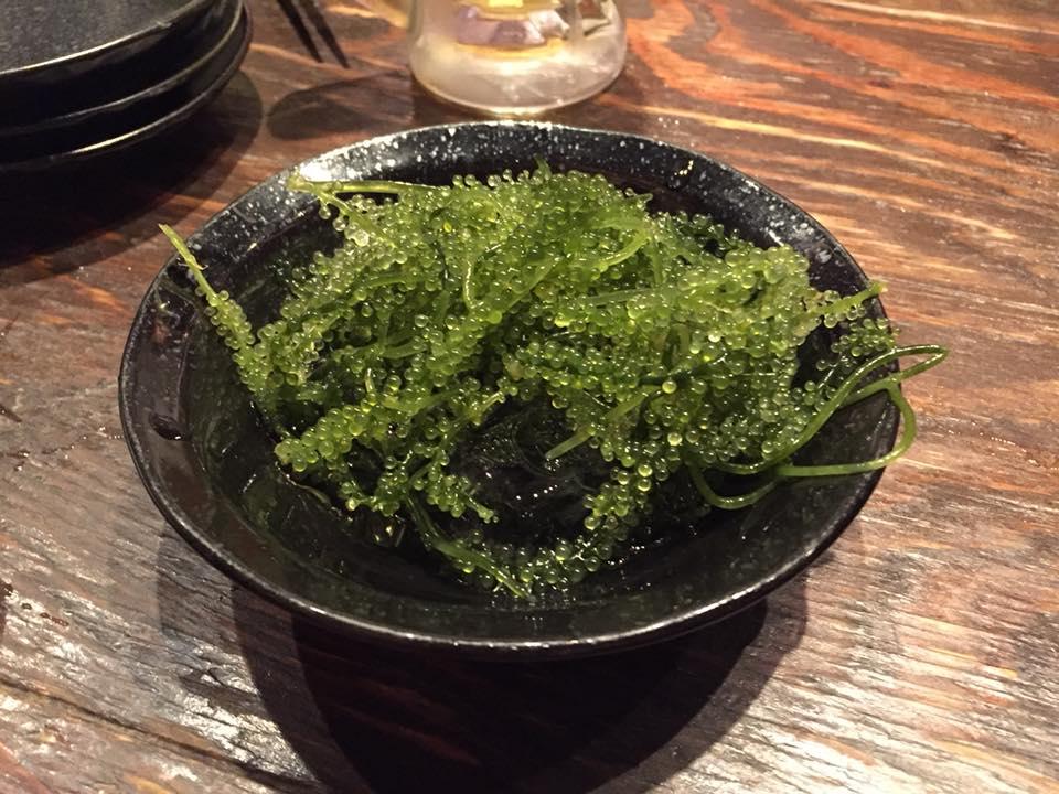 f:id:osugi-akira:20180716195530j:plain