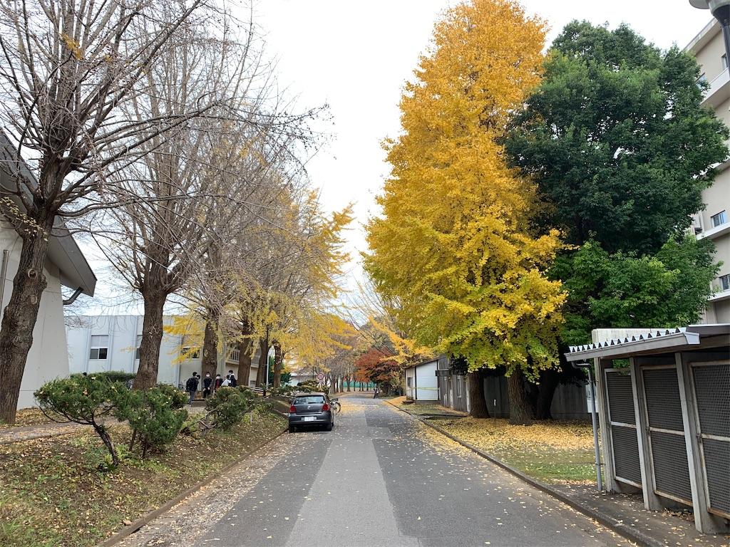 f:id:osugi-akira:20201215234506j:image