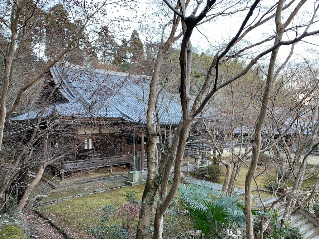 f:id:osugi-akira:20210103235110j:image