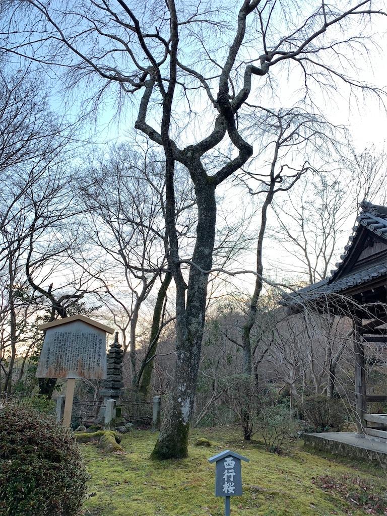f:id:osugi-akira:20210103235224j:image