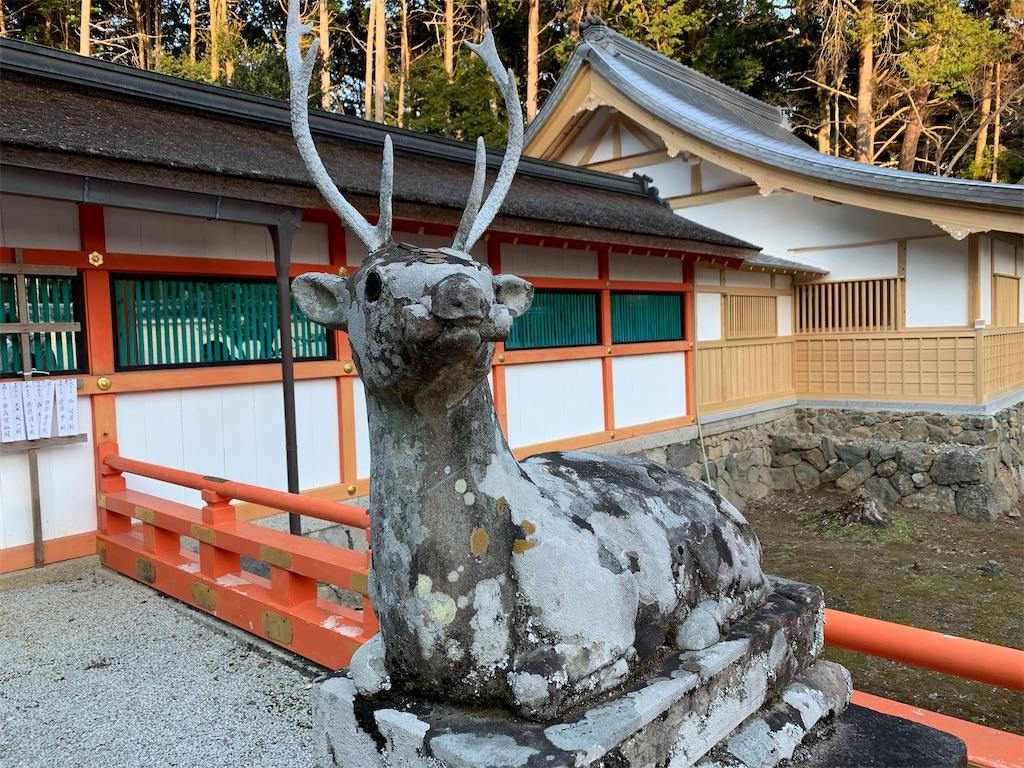 f:id:osugi-akira:20210103235236j:image