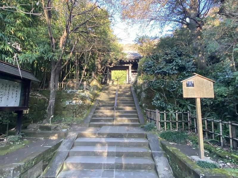 f:id:osukisuki:20191205151511j:image
