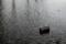 [雨][水たまり][波][缶]
