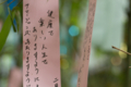 [京都][貴船神社][七夕]ちゃっかり