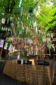 [京都][貴船神社][七夕]笹の葉さらさら