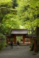 [貴船神社][神社][京都][奥の宮]奥宮
