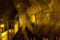 ウドの洞窟栽培