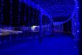 [イルミネーション]青のトンネル