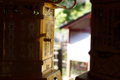 [春日大社][釣り灯篭][神社]0123