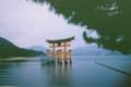 [写ルンです][宮島][厳島神社]写ルンですなっぷ1