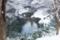 [雪][池][冬]