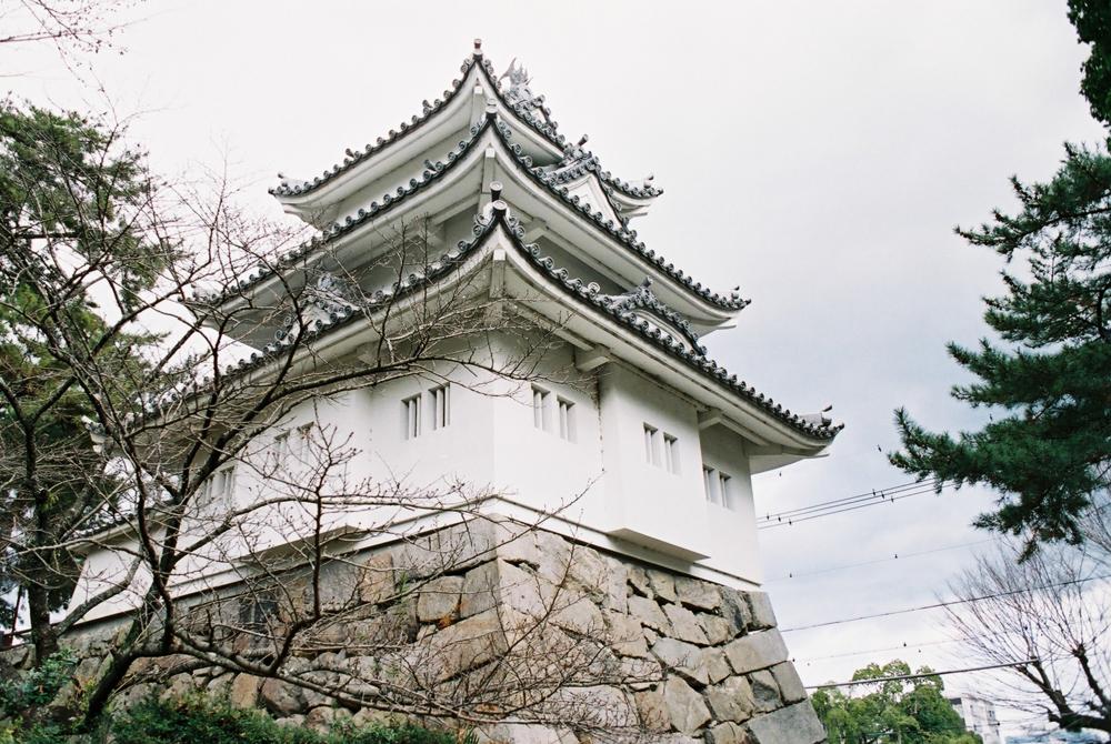 フィルムカメラで撮った津城の写真