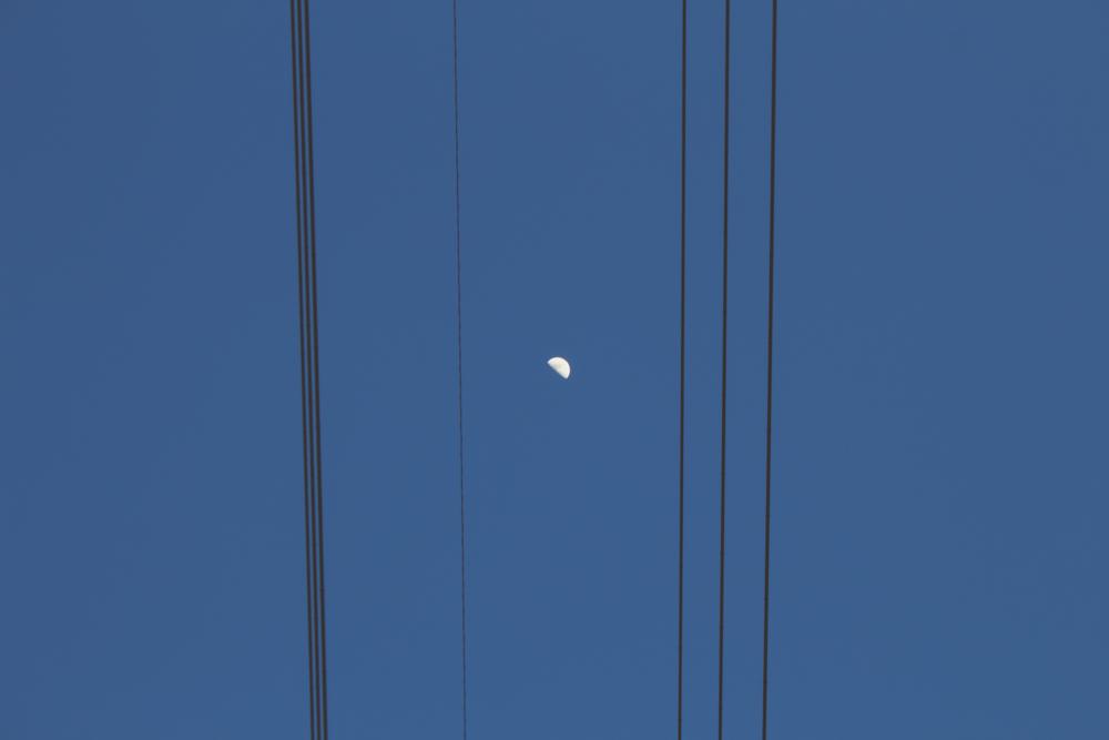月は電線の間から覗いていた