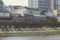 鴨川の人々3