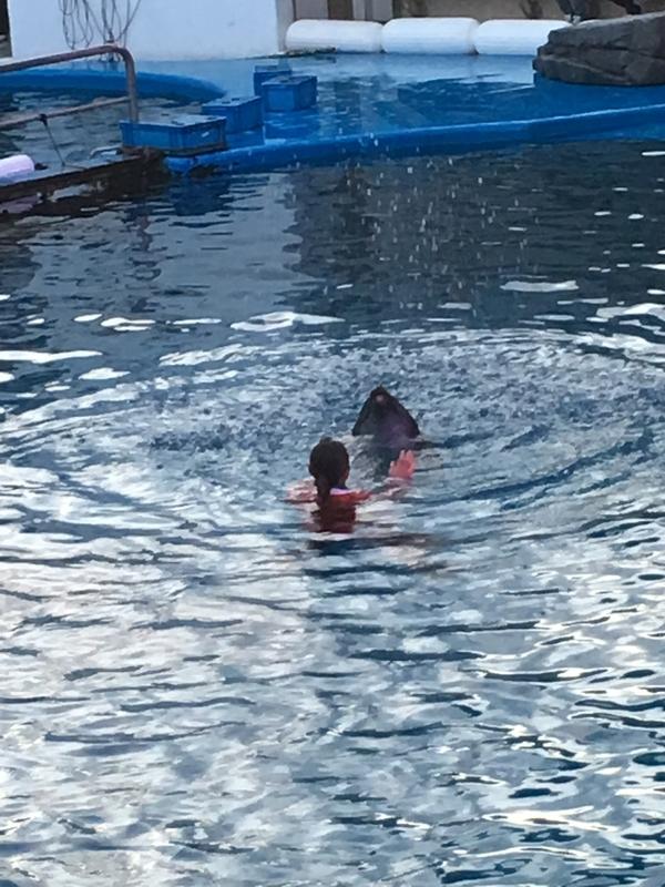 水中パフォーマンス