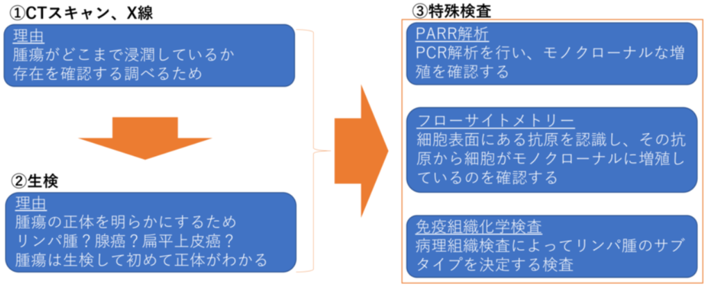 診断方法(図解)