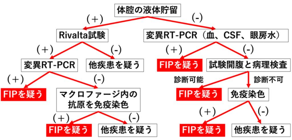 FIPの診断フロー(図解)