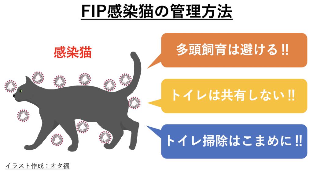 FIP③のアイキャッチ画像
