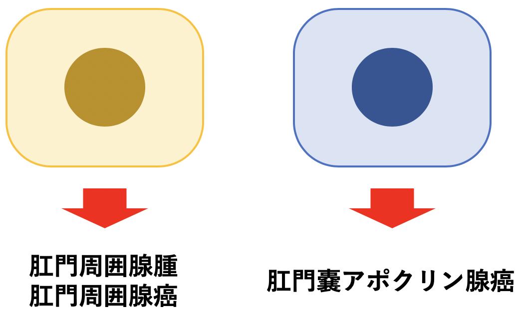 f:id:otahukutan:20190607002328p:plain